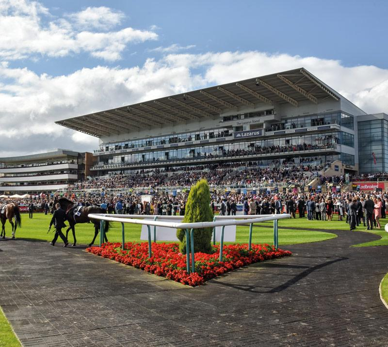 Racehorses parade in front of Doncaster grandstand on a lovely summers day.