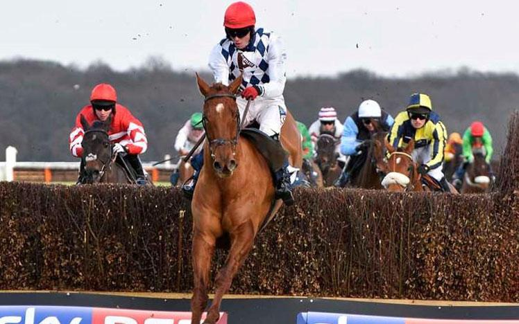 Jockey on a horse jumping over a hurdle.